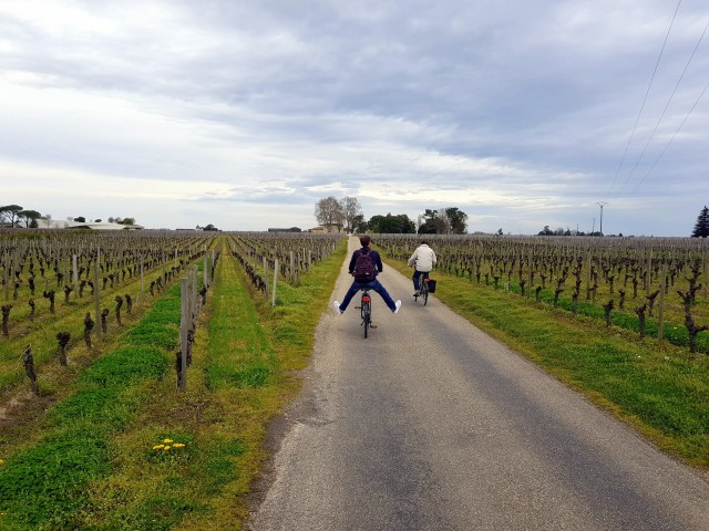 Wine and Bike tour around Saint-Emilion