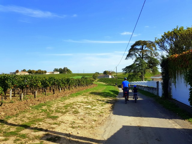 Bike and wine tour in Saint-Emilion